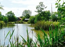 Wood Farm Camping & Caravaning Site